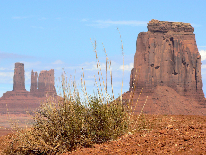 Looking through the grass at Monument Valley