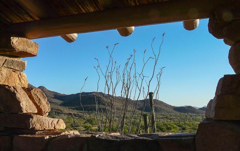 saguaro-west-tucson