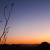 saguaro-west-tucson-3