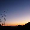 saguaro-west-tucson-4