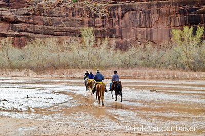 Riders in The Canyon