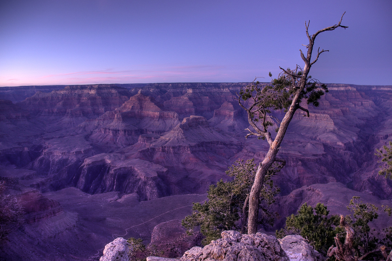 Overlooking view of Grand Canyon National Park in Arizona, USA