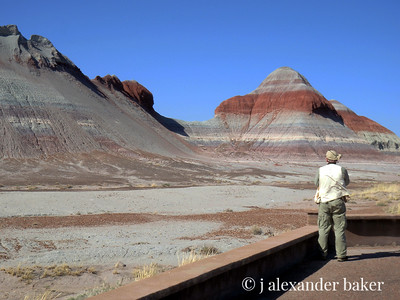 Shooting the Painted Desert