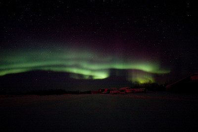 Bettle auroras day3 RIGHT