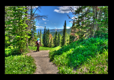 Exiting Beehive Basin, HDR whimsy of color