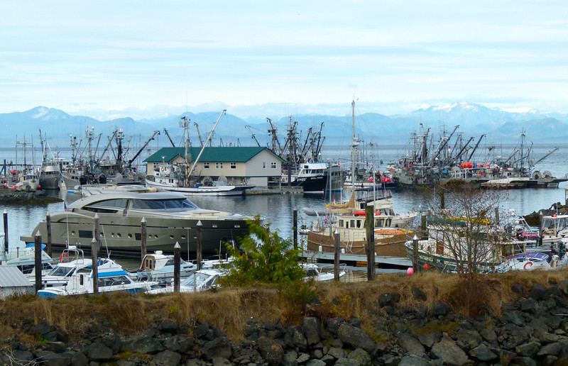 Marina in Port Hardy, B.C.
