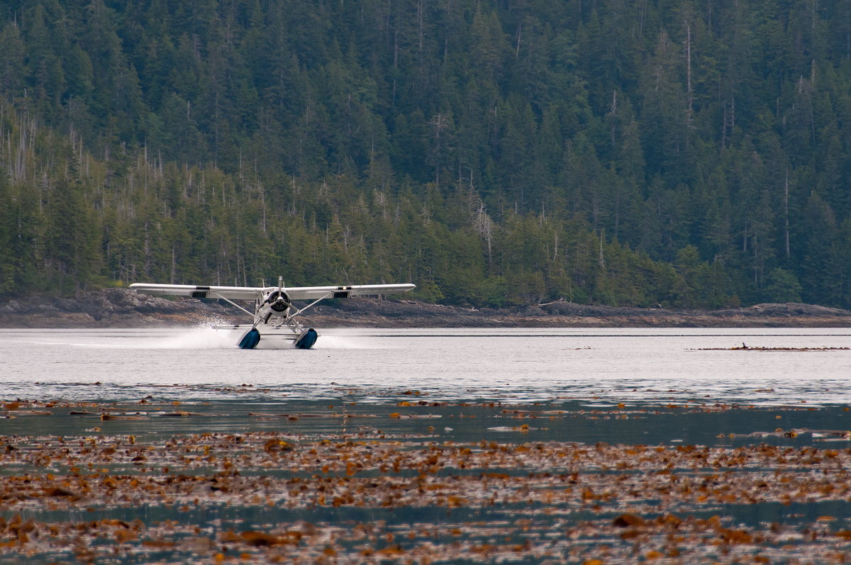 A Float Plane Landing in Haida Gwaii, British Columbia