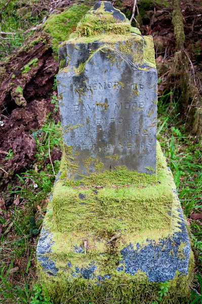 Tombstone in Tow Hill Ecological Reserve, Haida Gwaii, British Columbia