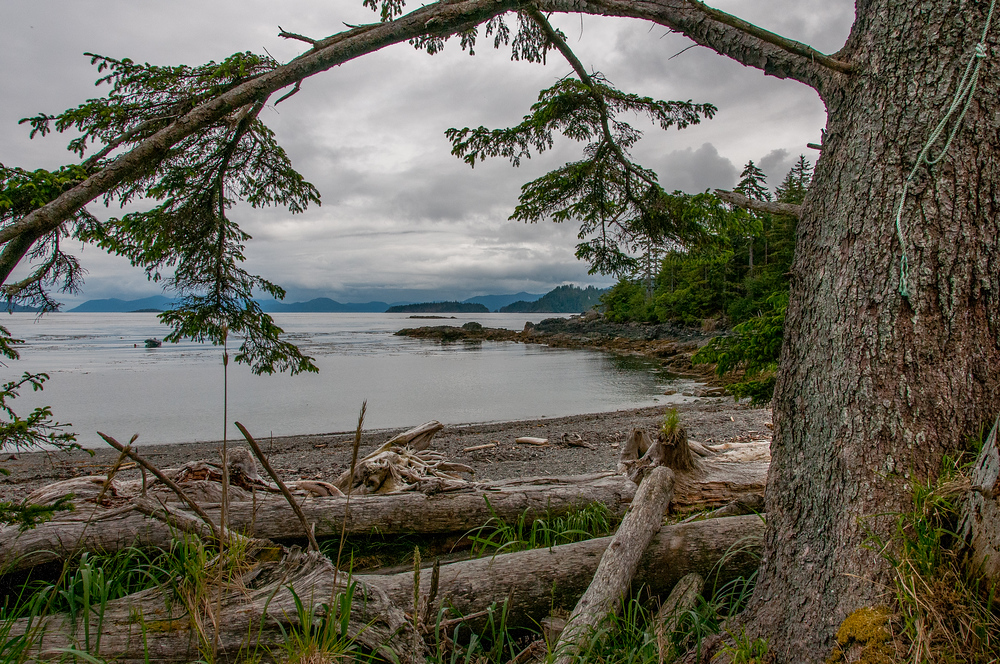 Coastline in Haida Gwaii, British Columbia