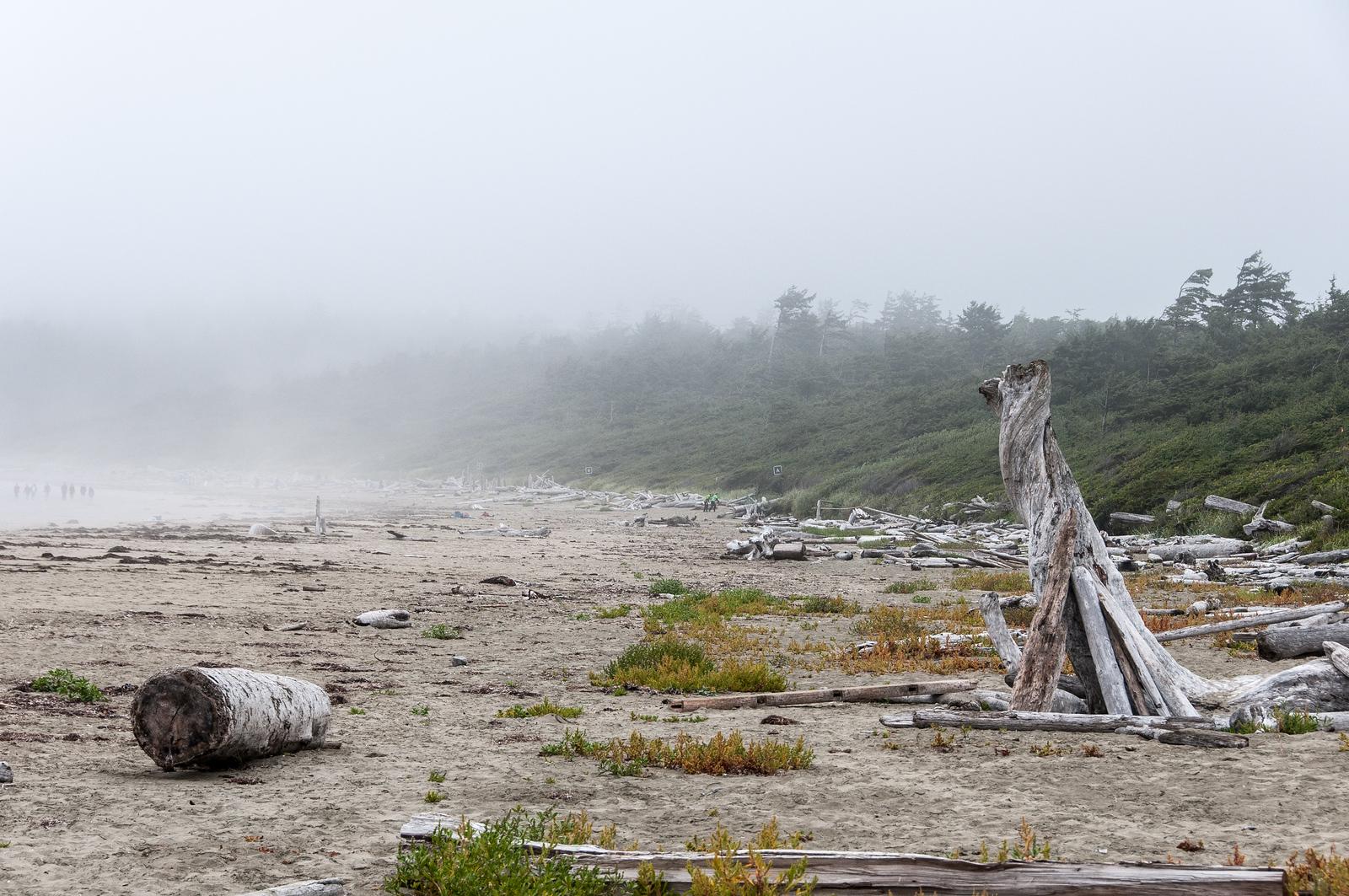 Pacific Rim National Park in British Columbia, Canada