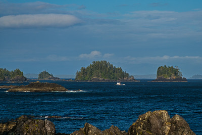 boat approaching Ucluelet Harbor