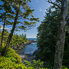 Wild Pacific Trail cove with logs