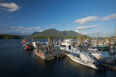 boats in Tofino Harbor late in the day
