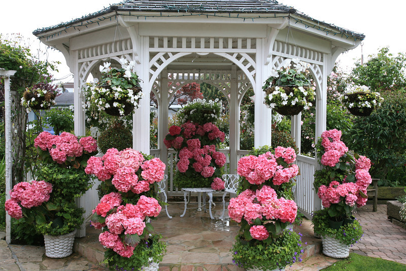 Flower filled gazebo at Mill Rose Inn in Half Moon Bay, California