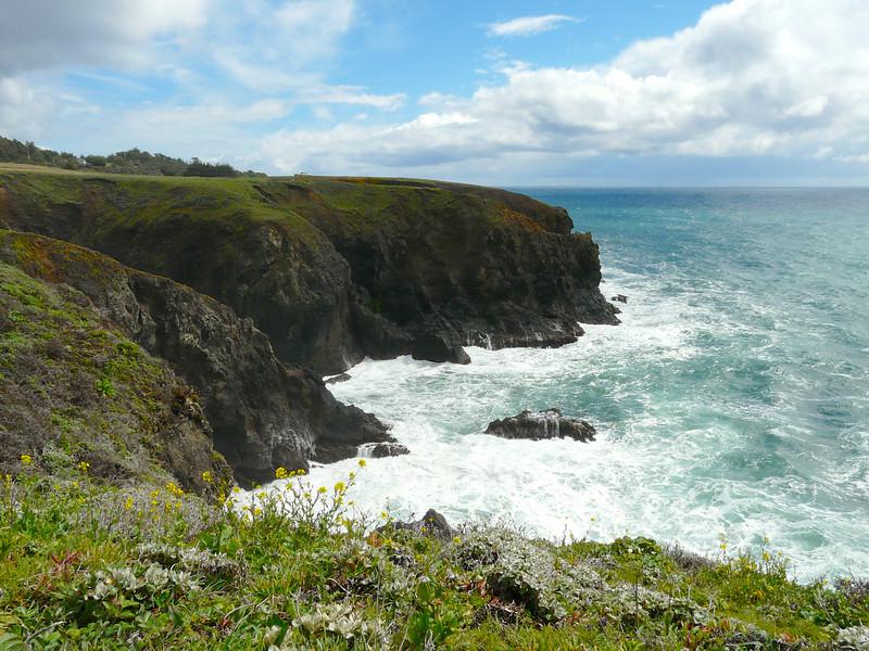 Top Five California Coastal Road Trip Apps