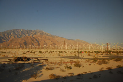 Windmills in Palm Springs along the Amtrak route in California