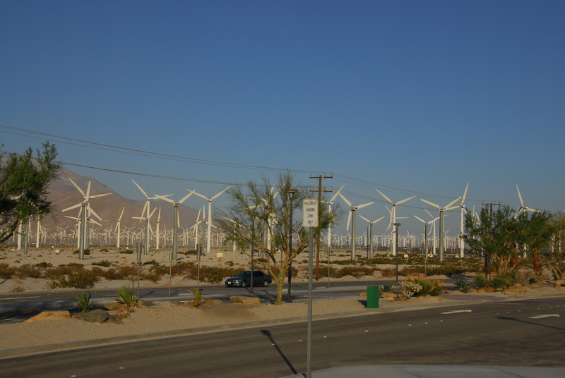 The windmills in Palm Springs along the Amtrak route in California