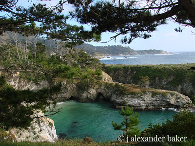China Cove, Point Lobos, Carmel, CA