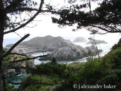 View of Bird Island, Point Lobos, CA