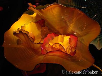 Art Glass - Jellyfish exhibits Montereny Bay Aquarium