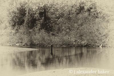 Gualala River Fly Fishing