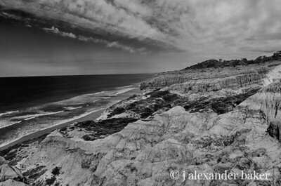 Torrey Pines Coastline