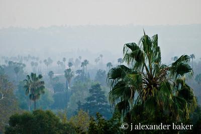 Palm Vista from Huntington Hotel