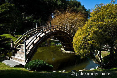 Japanese Garden at Huntington Library and Gardens in San Marino, CA