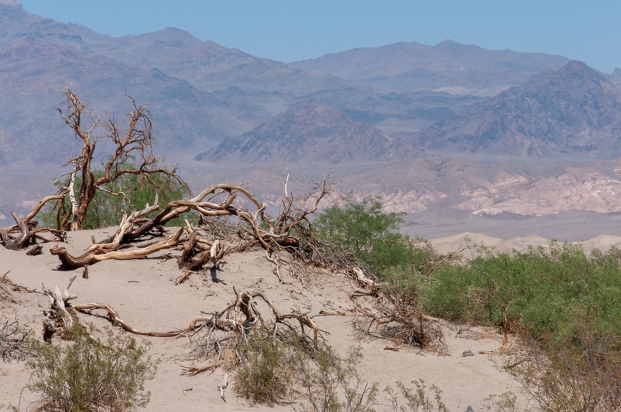 Stills from Death Valley National Park, California