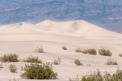 Sand dunes in Death Valley desert, California