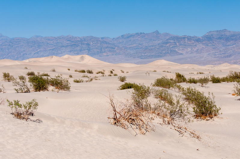 Sand dunes in Death Valley desert in California