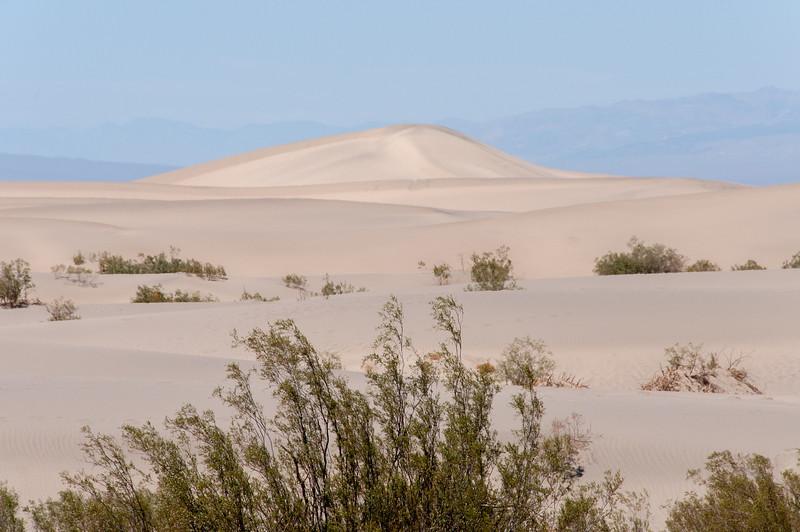 Sand dunes in Death Valley desert in California