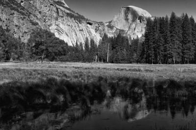 Merced River Meadows near Yosemite Valley in California