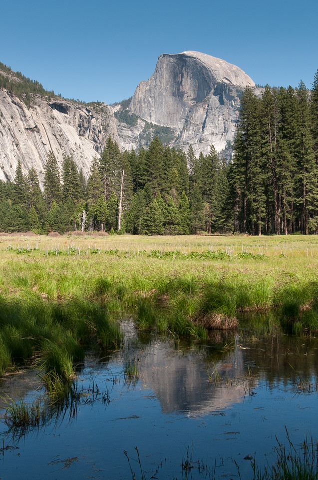 View of El Capitan from the Merced River Meadows in Yosemite National Park