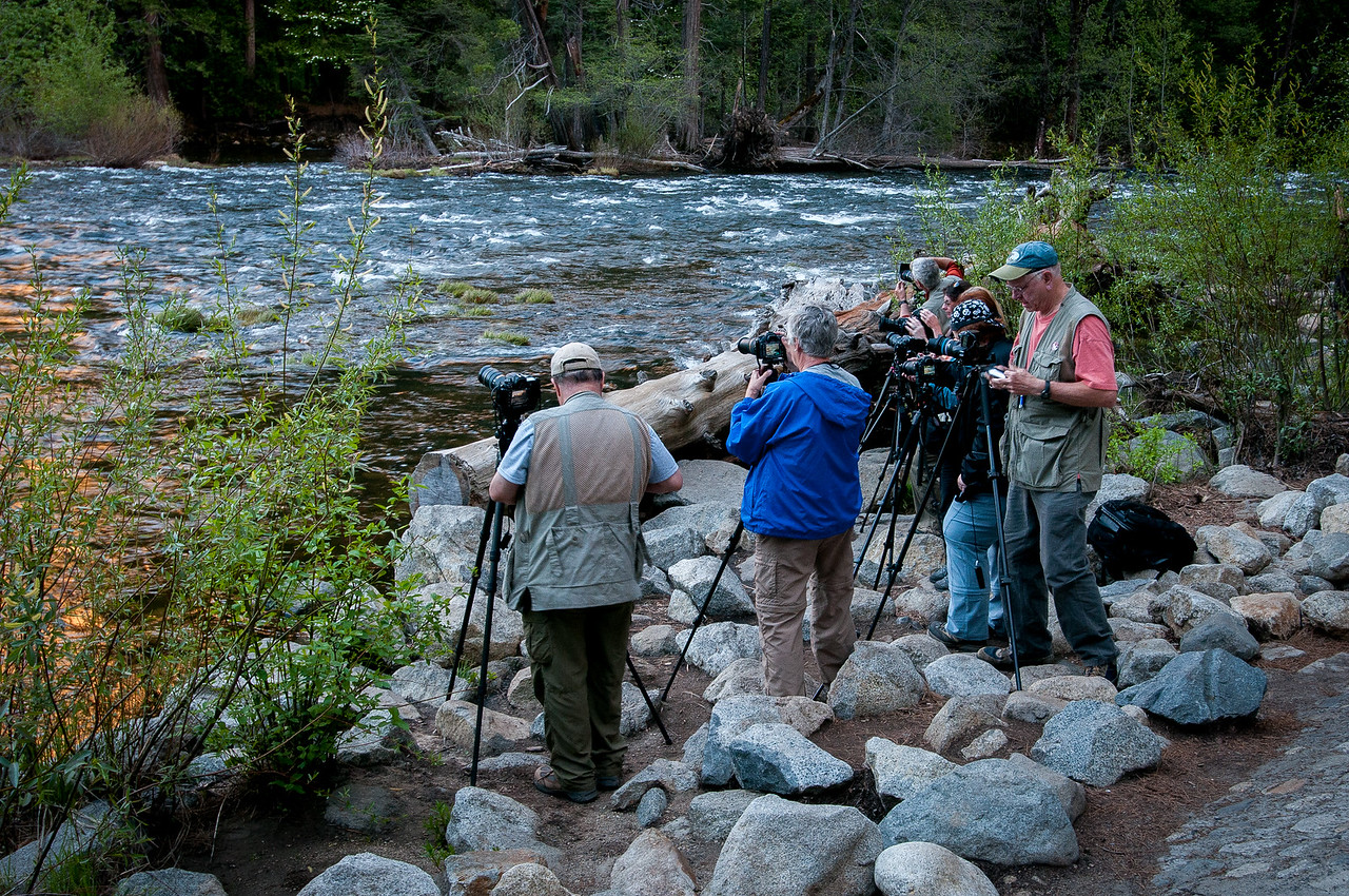 Photographers shooting the Yosemite Valley from across the Merced River