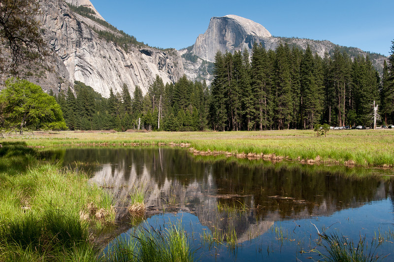 El Capitan as seen from Merced River meadows in Yosemite National Park