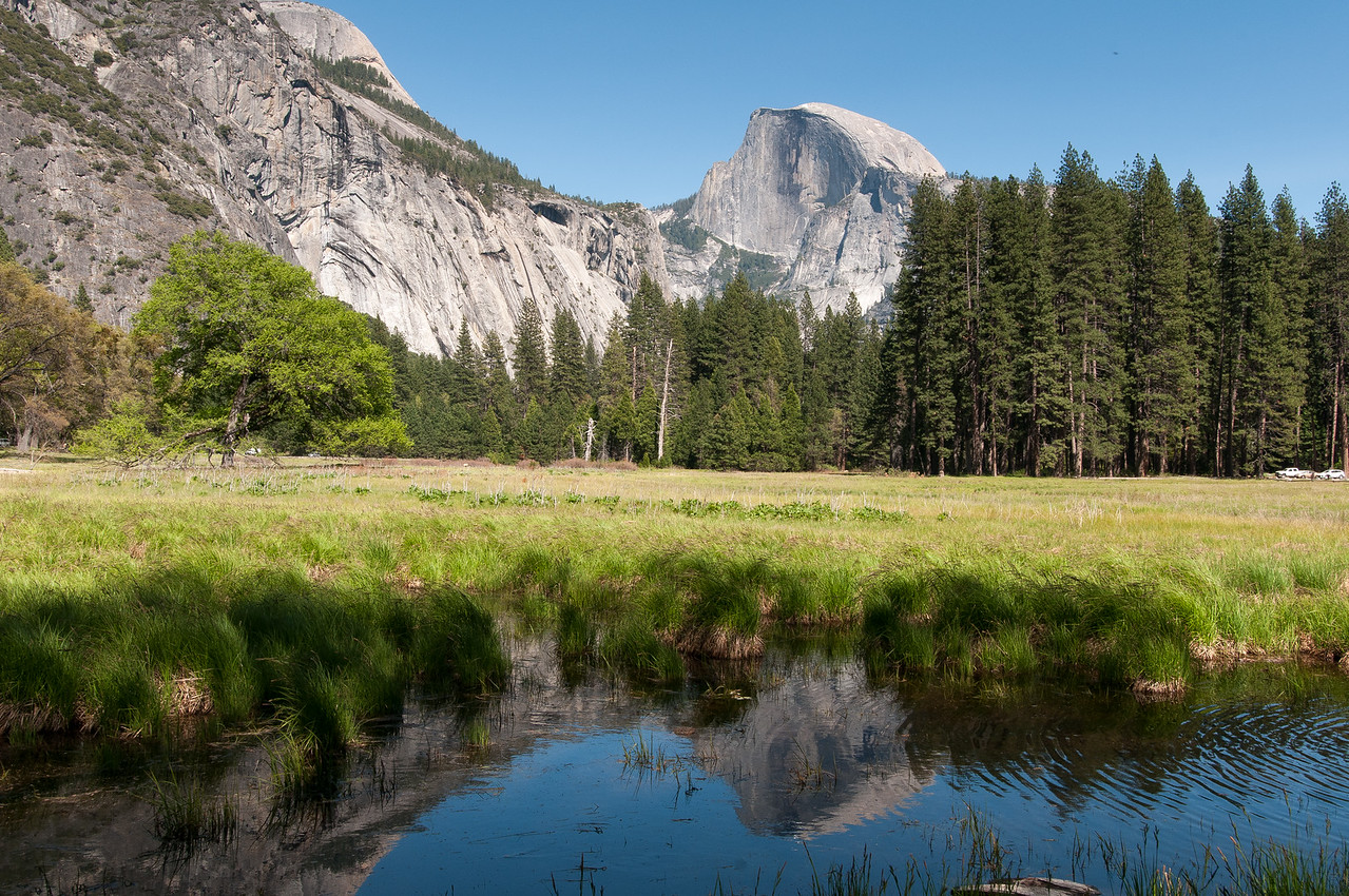 View of El Capitan from Merced River meadows in Yosemite National Park