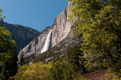 Yosemite Falls from the ground at the Yosemite National Park