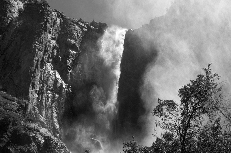 Yosemite Falls from the ground - Yosemite National Park