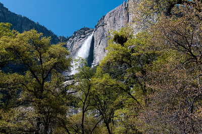 Yosemite Falls in Yosemite National Park, California