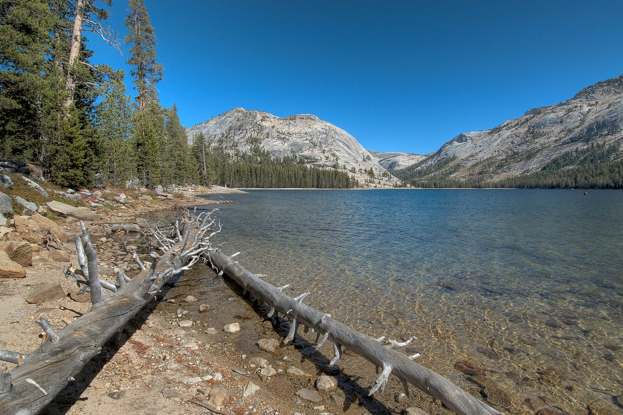 Tenaya Lake at Yosemite National Park in California