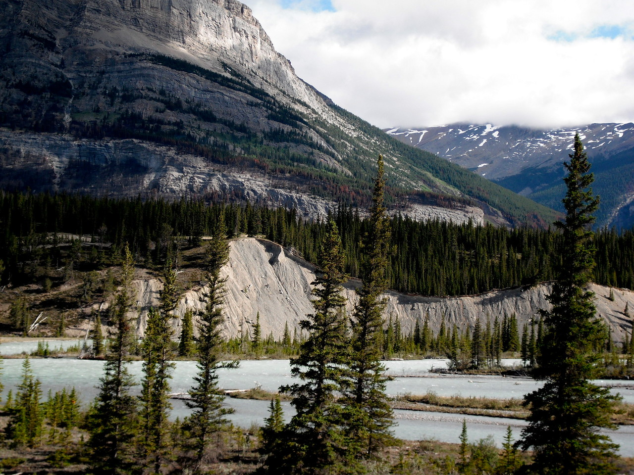 Along HWY 93 (Icefields Parkway)
