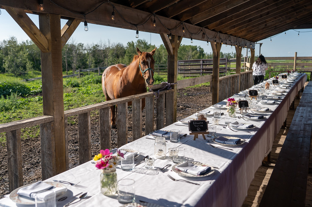 Long table dinner at the Old Red Barn