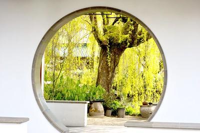 Inside Dr. Sun Yat-Sen Gardens