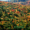 Fall colors in Quebec