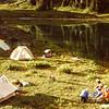 fabulous camp site