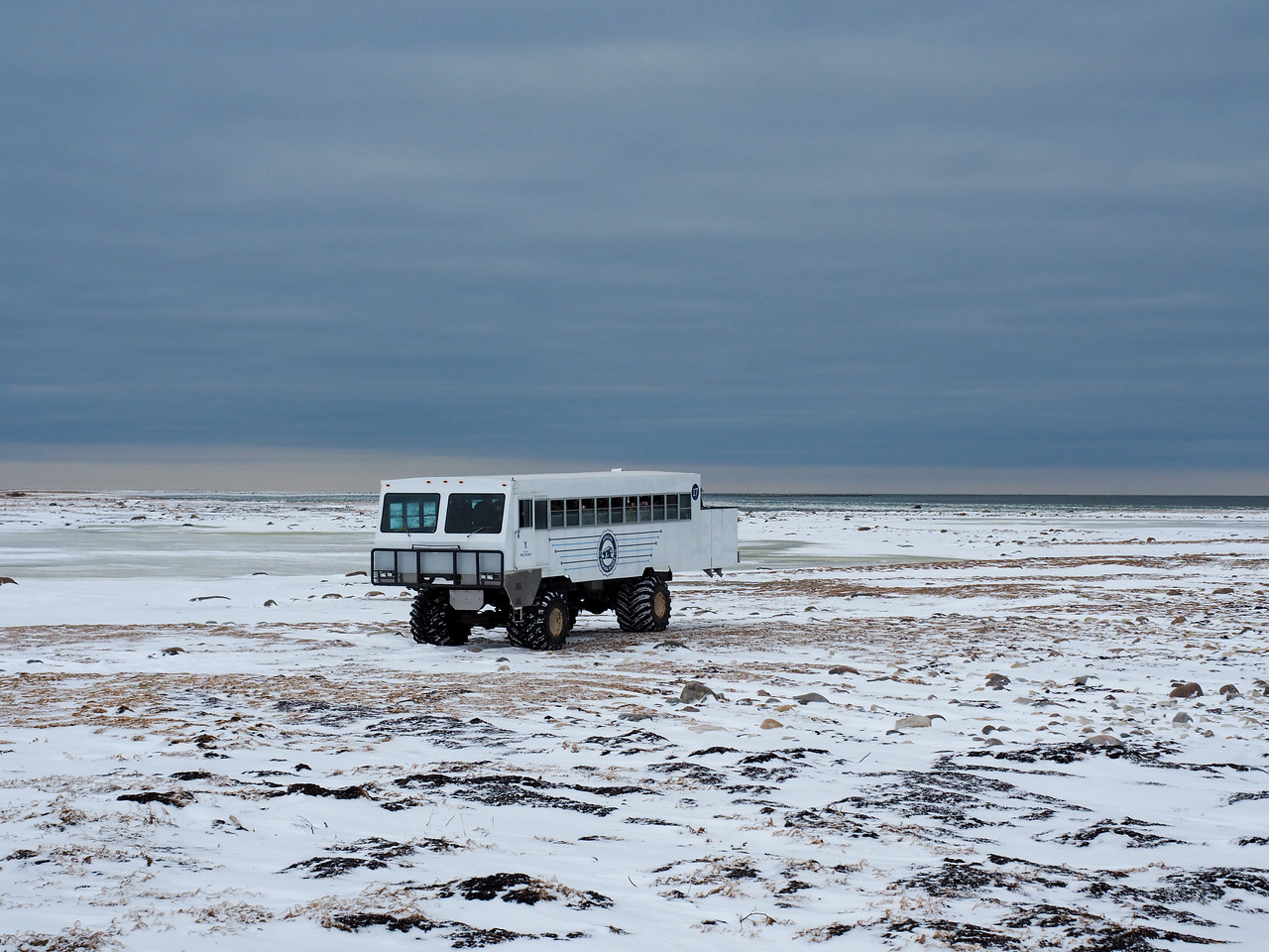 Tundra vehicle in the CWMA