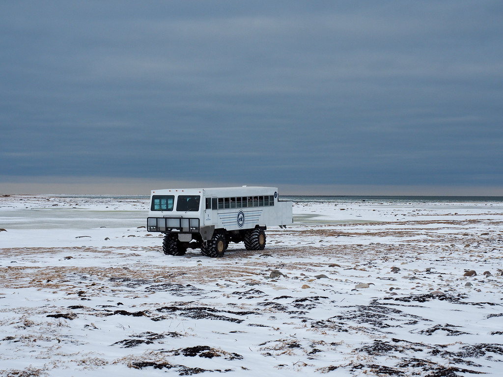 Tundra Buggy in Manitoba