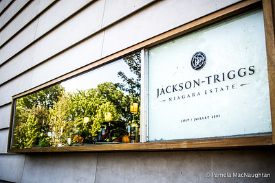 Jackson Triggs Winery