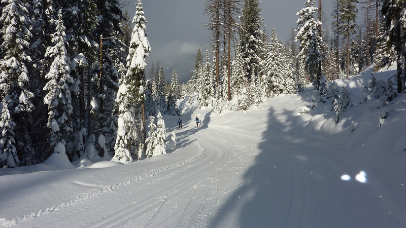 This one photo captures the magic of XC skiing at Silver Star!